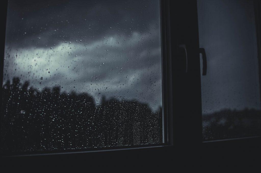 boris, rainy days and sundays